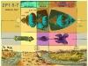 2Pt 1,5-7 motýlí kukla a poušť